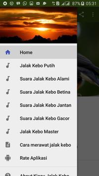 Kicau Jalak Kebo Gacor poster