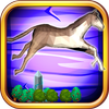 Horse Runner icon
