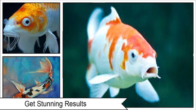 Koi Fish Wallpaper 3D screenshot 2