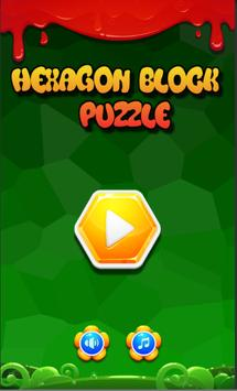 Hexagon Block Puzzle poster