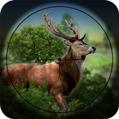 Forest Hunt icon