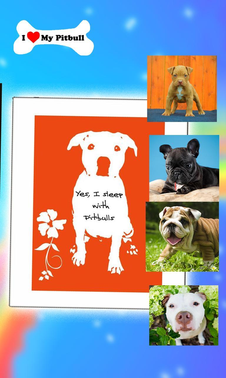 Pitbull Game Jigsaw Puzzle - New Dog Game App for Android