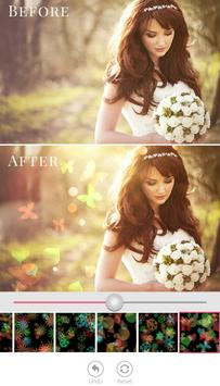 Bokeh Effect Background poster