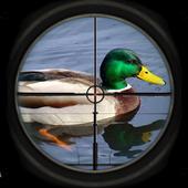 Duck Shoot Hunting Bird Wild Sniper 3D 2018 icon