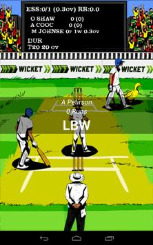 Hit Wicket Cricket - English County League Game apk screenshot