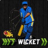 Hit Wicket Cricket 2018 - Indian League Game icon