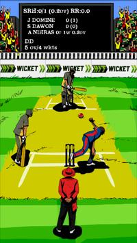 Hit Wicket Cricket 2018 - Indian League Game poster