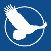 Mobile Progress Report icon