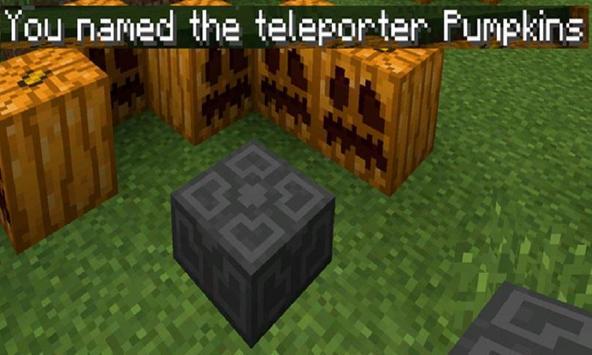 Mod Teleporter for MCPE screenshot 1