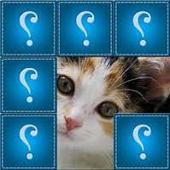 Guess photos. icon