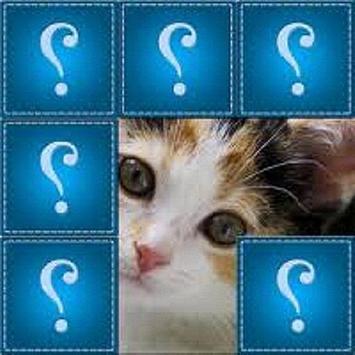 Guess photos. poster