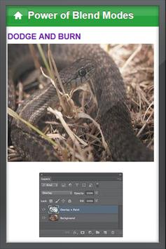 Basic Photoshop 2013 Tutorial apk screenshot