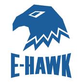 E-Hawk icon
