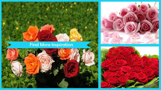 Red Roses Wallpaper HD screenshot 4