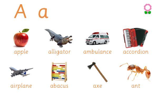 Alphabets Vocabulary Book poster