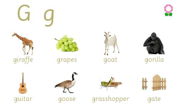 Alphabets Vocabulary Book screenshot 2