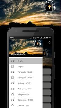 Audio Bible MP3 apk screenshot