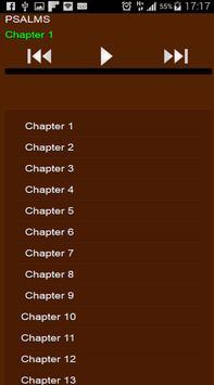 Bible Audio MP3 apk screenshot