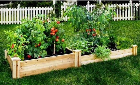 home gardening planting PVC idea screenshot 6