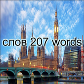 207 Russian and English words icon