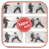 Wing Chun Movement icon