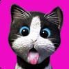 Daily Kitten biểu tượng