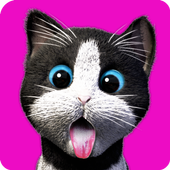 Daily Kitten icon