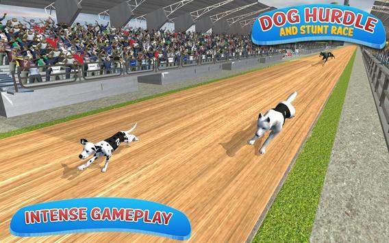 Classical Dog Hurdle Race 2017 apk screenshot