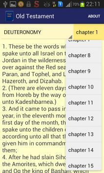 Youth Bible apk screenshot