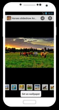 Horses slideshow & Wallpapers poster