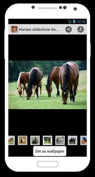 Horses slideshow & Wallpapers screenshot 1