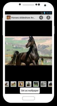 Horses slideshow & Wallpapers screenshot 2