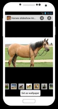 Horses slideshow & Wallpapers screenshot 4