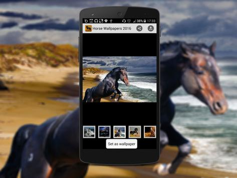 Horse Wallpapers 2016 poster