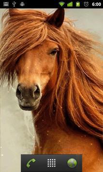 horses live wallpaper screenshot 1