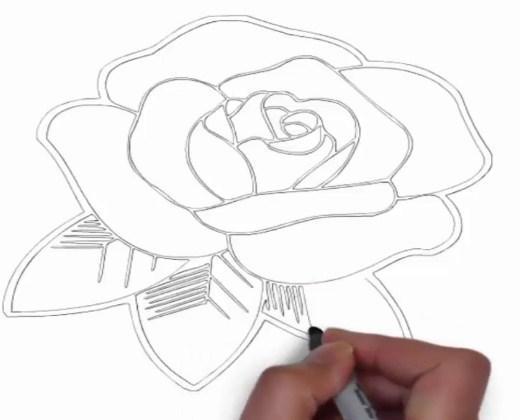 Como Desenhar Rosa Passo A Passo Para Android Apk Baixar
