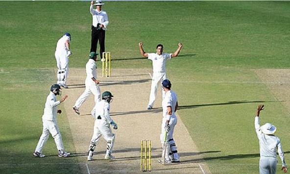 How to Play Cricket apk screenshot