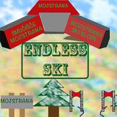 Endless SKI icon