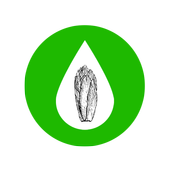 Hydroponics for Leaf vegetable icon