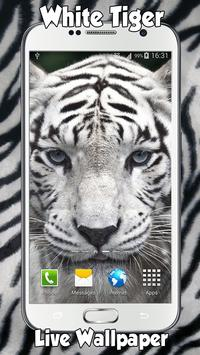White Tiger Live Wallpaper apk screenshot