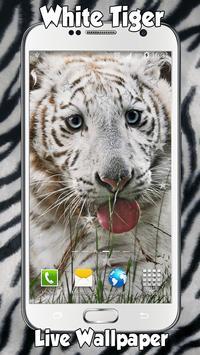 White Tiger Live Wallpaper apk screenshot