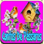 Cantos De Pássaros Silvestres icon
