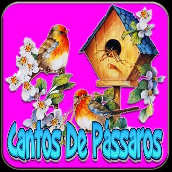Cantos De Pássaros Silvestres poster