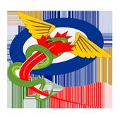Div Surg icon