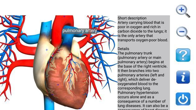 Visual Anatomy Free 截图 6