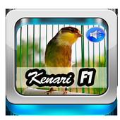 Suara Master Kenari F1 icon