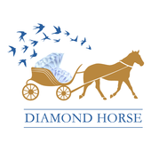 Diamond Horse 马来宝 icon
