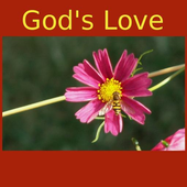 God's Love -Quotes&Meditations icon