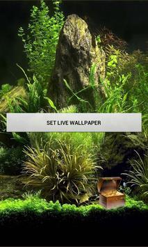 Fish Pool LWP apk screenshot