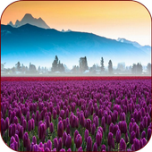 Valley Flower Live Wallpaper icon